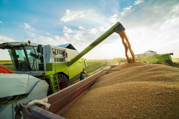 IBGE prevê maior safra da história com quase 214 milhões de toneladas