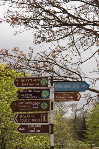 2008-04-20_blarney_36