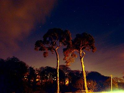 photoblog-20041126