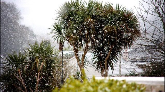 Snowing in Blarney