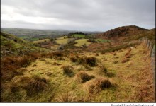 The rolling hills of Bantry