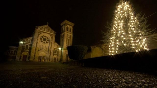 Chistmas Tree Lights