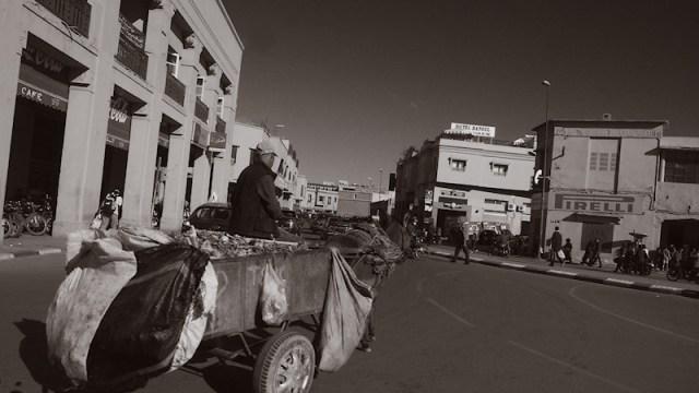 Four legged Traffic in Marrakesh