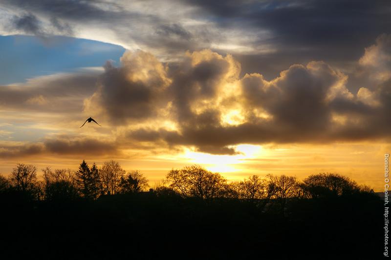 A Cold Sunrise