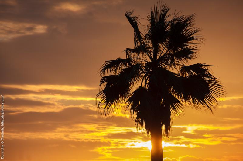 Sunset in El Puerto de Santa Maria