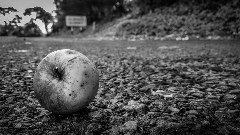An Apple for Blarney