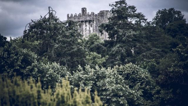 Blarney Castle in the Trees