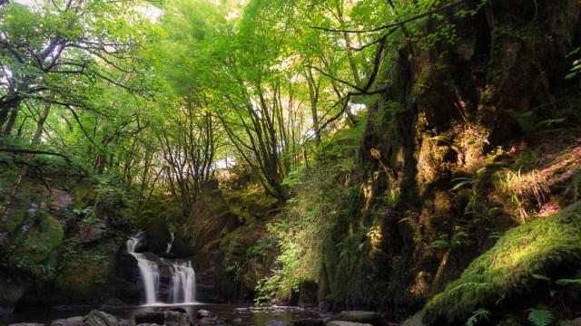 Poulanassig Waterfall