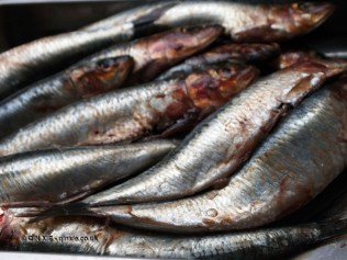 Sardines at Fish in a Day, Food Safari