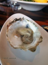 Oyster, Catch by Simonis, The Hague