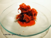 Ice shreds, scarlet shrimp perfume, Mugaritz, Errenteria