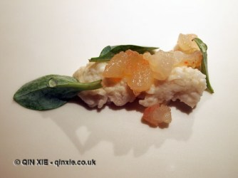 Tanned lobster flesh and fermented rice, Mugaritz, Errenteria