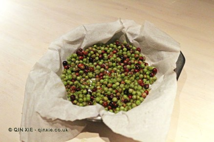 Berries, Boragó, Santiago, Chile