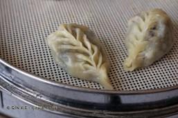 Leaf shaped dumplings, Dumplings feast at De Fa Chang, Xian, China