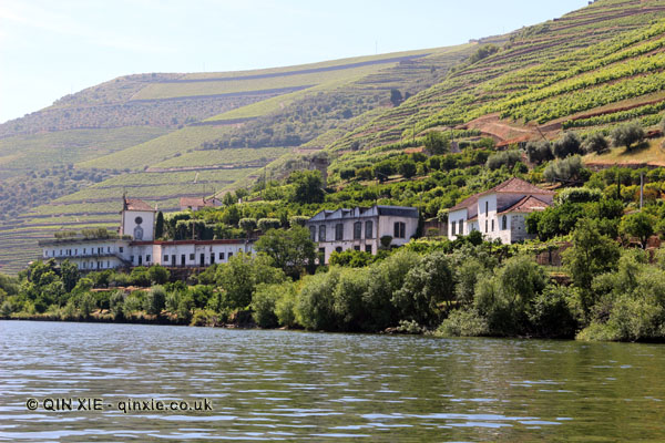 Quintas along the river, Douro Valley, Portugal