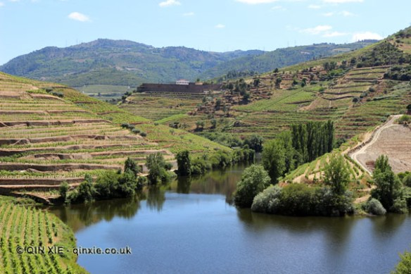 Tribuary, Douro Valley, Portugal