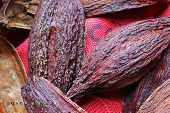 Cocoa pod shell, Diamond Chocolate Factory