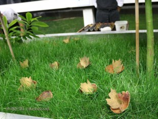 Mushroom leaf, #AtxaAndreRicard at Azurmendi, Larrabetzu