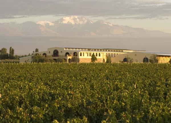 Francois Lurton vineyard