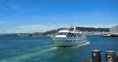New Zealand tourism thumb