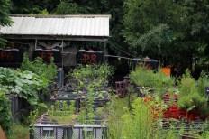 Princezzinnen Garten inside