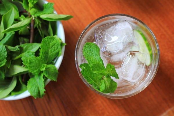 Cucumber, Mint, and Basil Soda