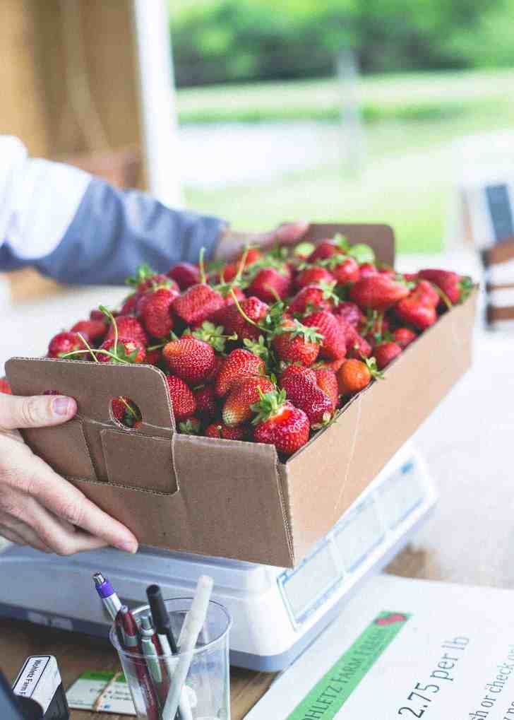 Wohletz Farm Strawberries
