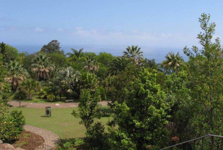 291117_Funchal_cote_jardin_3