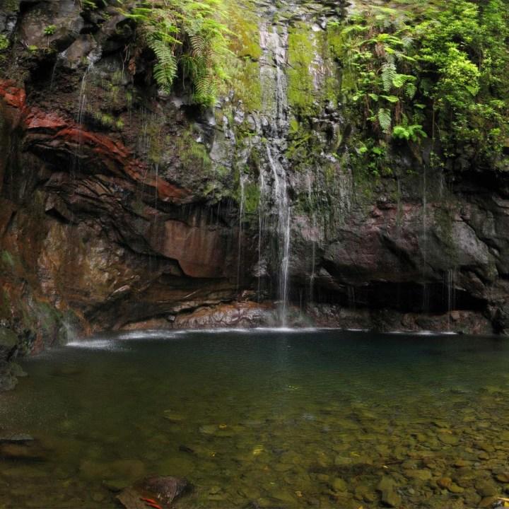 Randonnée à Madère : les 25 Fontes, de levada en cascade