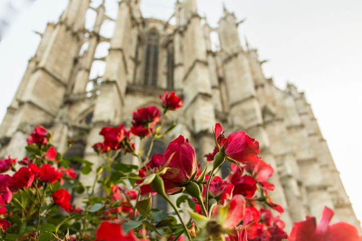 Cathedrale_Beauvais_10