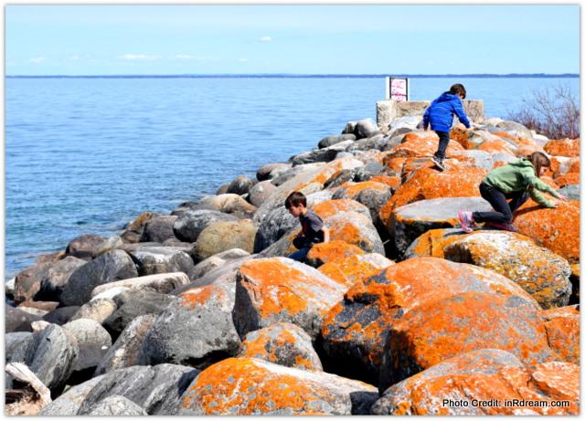 Rock jumping Shores of Collingwood