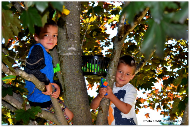 Let them be bored, My kids are bored, Boredom is good, Creativity sparks when boredom is present, kids climbing tree
