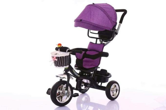 Sepeda Anak Exotic Tricycle Kanopi