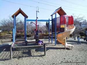 Fun all year round in Kamihira Park | AGEO