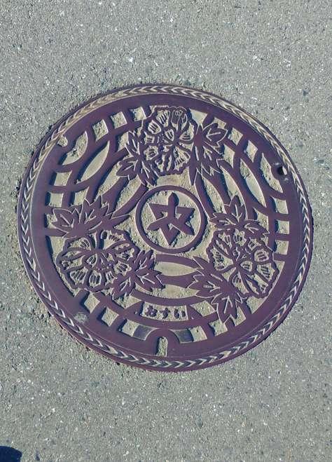 Higashimatsuyama manhole