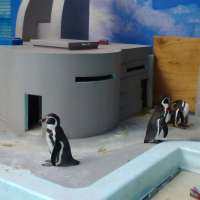 Places to bring children to visit animals in Tokyo | GREATER TOKYO AREA