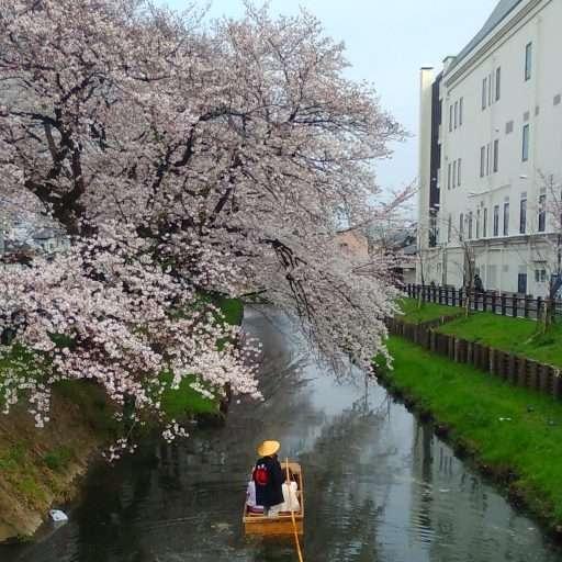 boat ride shingashi