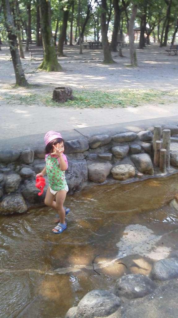 Summer in Isanuma Park   Kawagoe