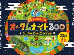 Autumn Night Zoo Tobu Miyashiro Saitama Japan 2019