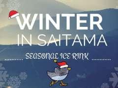 Laketown Skate rink