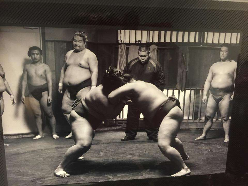 Watching Sumo Practice | TOKYO