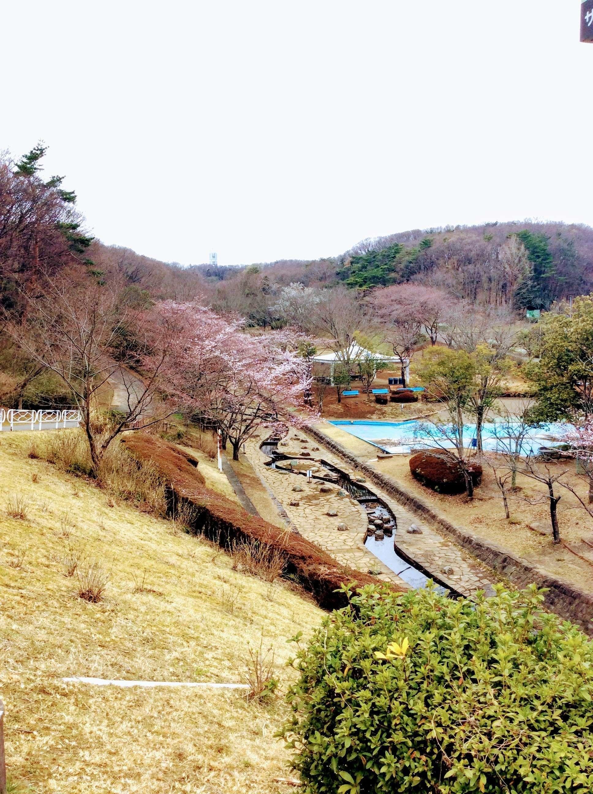 Wading river and splash pool at Saitama Children's Zoo