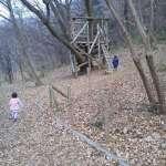 Tree house moomin valley