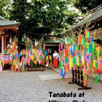 Tanabata Festival with wind chimes at Hikawa Shrine | KAWAGOE