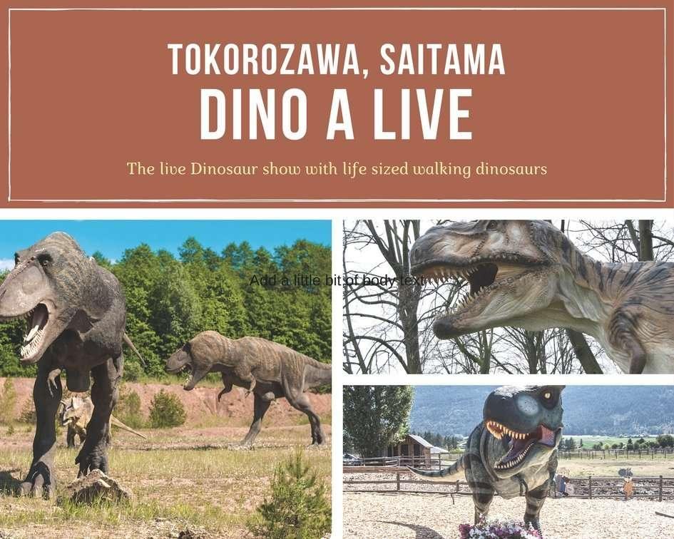 Dino A Live in Seibu Building near station | TOKOROZAWA
