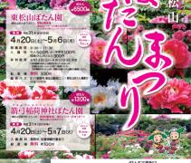 Peony Festival Higashimatsuyama 2019