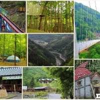 Forest adventure Ueno and Mahoba No Mori | GUNMA