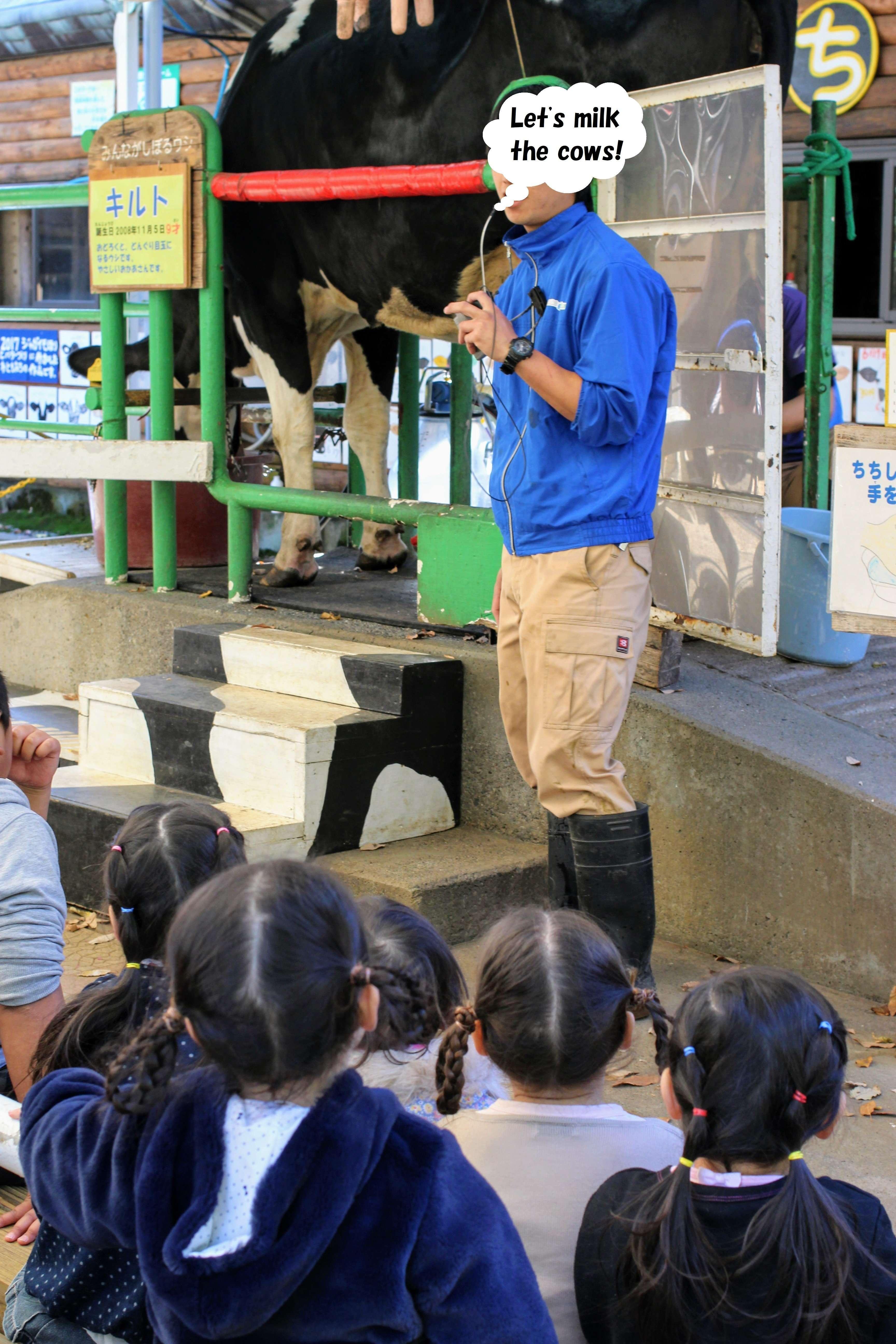 Butter making Milk fair saitama children's zoo saitama children's animal nature park