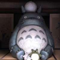 Visiting Totoro at the house of Kurosuke   TOKOROZAWA