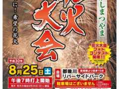 Higashimatsuyama Fireworks from the official site
